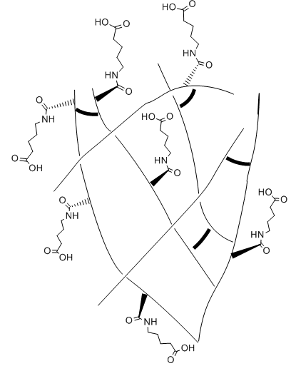 An example of a dangling chain self healing hydrogel network