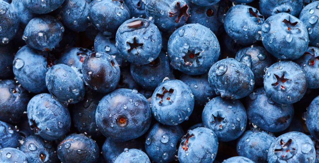 blueberries are good anti oxidants to help fight aging
